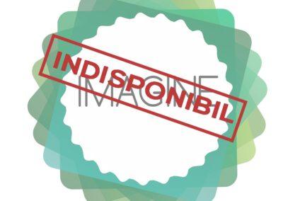 Logo pentru firme, dinamicitate, profesionalism, logo green, cerc, minimalist, modern, creativ